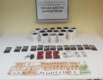 Συνελήφθη ένα άτομο στην Ημαθία για καλλιέργεια κάνναβης