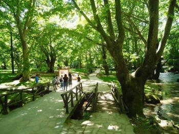 Επισκέψιμα και πάλι για τους πολίτες από σήμερα, Δευτέρα 18 Μαΐου, το Άλσος Αγίου Νικολάου και τα πάρκα του Δήμου Νάουσας