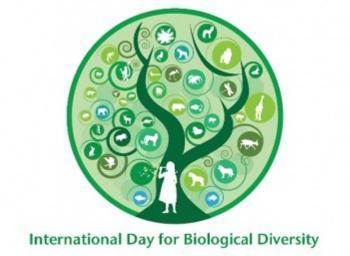 Η Παγκόσμια Ημέρα Βιοποικιλότητας και η συμβολή του ΥΠΑΑΤ