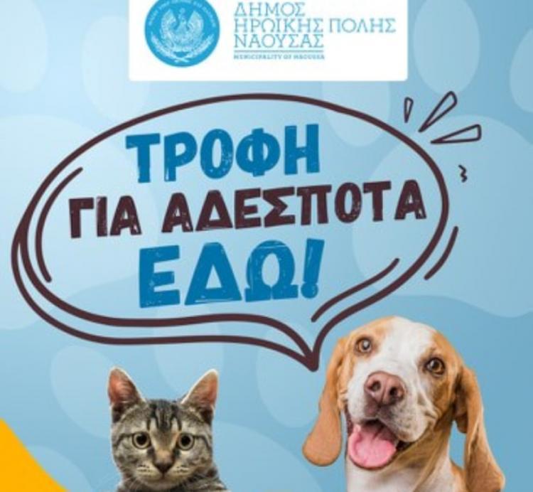Ηλεκτρονικό καινοτόμο «εργαλείο» για την υιοθεσία αδέσποτων ζώων θέτει σε λειτουργία ο Δήμος Νάουσας