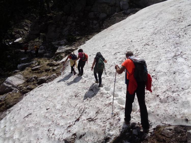 ΟΛΥΜΠΟΣ, ΠΡΙΟΝΙΑ 1100μ. ΥΨΟΜΕΤΡΟ  -  ΛΙΒΑΔΑΚΙ 2100 μ., Κυριακή 14 Ιουνίου 2020, με τους ορειβάτες Βέροιας