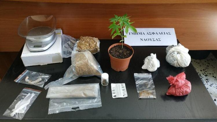 Σύλληψη ημεδαπού στην Ημαθία για καλλιέργεια κάνναβης και κατοχή ναρκωτικών ουσιών