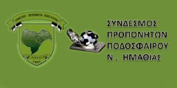 Νέο Διοικητικό Συμβούλιο στο Σύνδεσμο Προπονητών Ημαθίας
