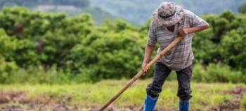 Δόθηκε παράταση στις διοικήσεις Αγροτικών Συνεταιρισμών και σε αιτήσεις για εργάτες γης