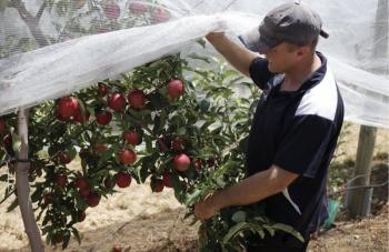 Κοινή Αγροτική Πολιτική : Επιπλέον 450 ευρώ στο τσεκ με αναδιανεμητικό πριμ σε 300.000 αγρότες