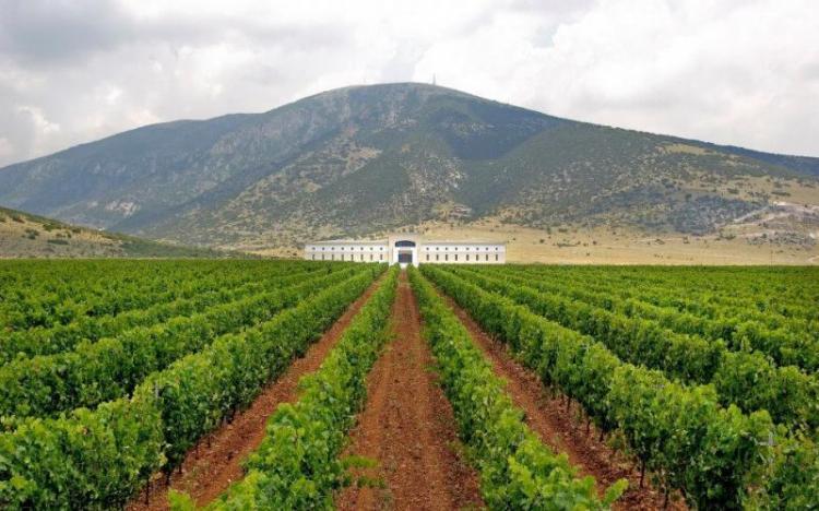 Συμφωνία των Πρεσπών: Παρατηρητήριο για την προστασία του Μακεδονικού Οίνου
