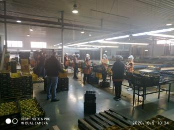 Επίσκεψη κλιμακίου του Συνδικάτου Γάλακτος Τροφίμων Ποτών Ημαθίας - Πέλλας σε επιχειρήσεις