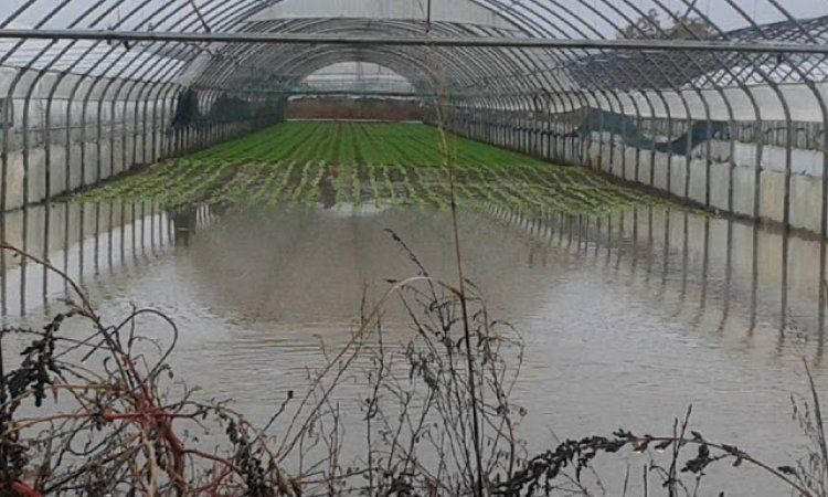Ανακοίνωση για τις ζημιές από τις βροχοπτώσεις στο Νομό Ημαθίας από την Τ.Ε. Ημαθίας του ΚΚΕ