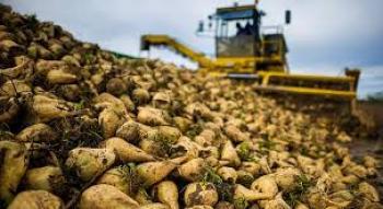 Ερώτηση προς τους Υπουργούς Αγροτικής Ανάπτυξης & Τροφίμων και Ανάπτυξης &  Επενδύσεων για τα προβλήματα των παραγωγών ζαχαροτεύτλων