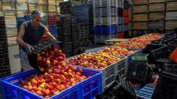 Στ. Θεοδουλίδης : Με τη συμβολαιακή γεωργία, παραγωγοί και βιομηχανία καλύπτουν το κόστος παραγωγής