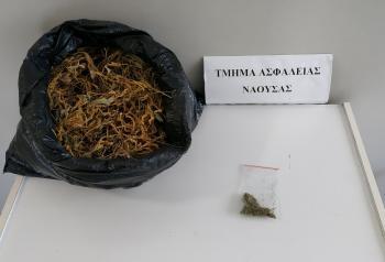 Συνελήφθη την Τρίτη στην Ημαθία ημεδαπός για κατοχή ποσότητας κάνναβης