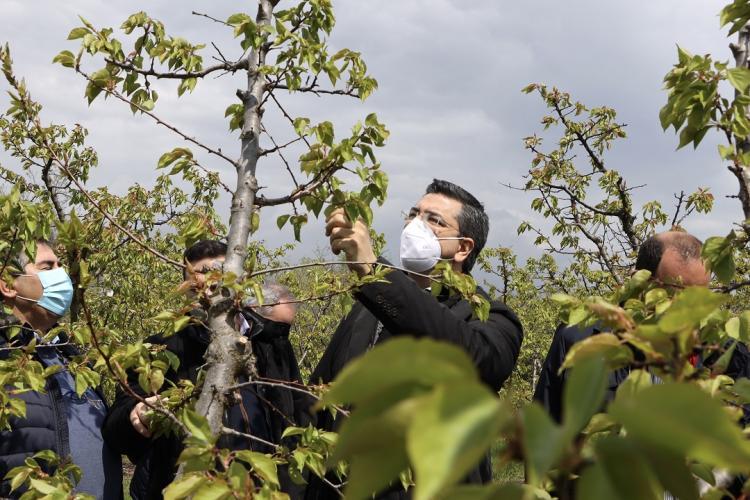 Τις πληγείσες περιοχές της Ημαθίας και της Πέλλας επισκέφτηκε ο Περιφερειάρχης Απ. Τζιτζικώστας
