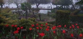 Στο ευρωπαϊκό δίκτυο ιστορικών πάρκων το πάρκο της Νάουσας!