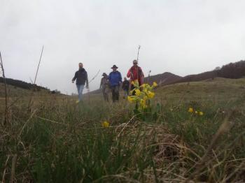 ΒΕΡΜΙΟ, Ξηρολίβαδο – Αρσούμπασι 1878 μέτρα, Μ.Σάββατο 1η Μαϊου 2021, με τους Ορειβάτες Βέροιας