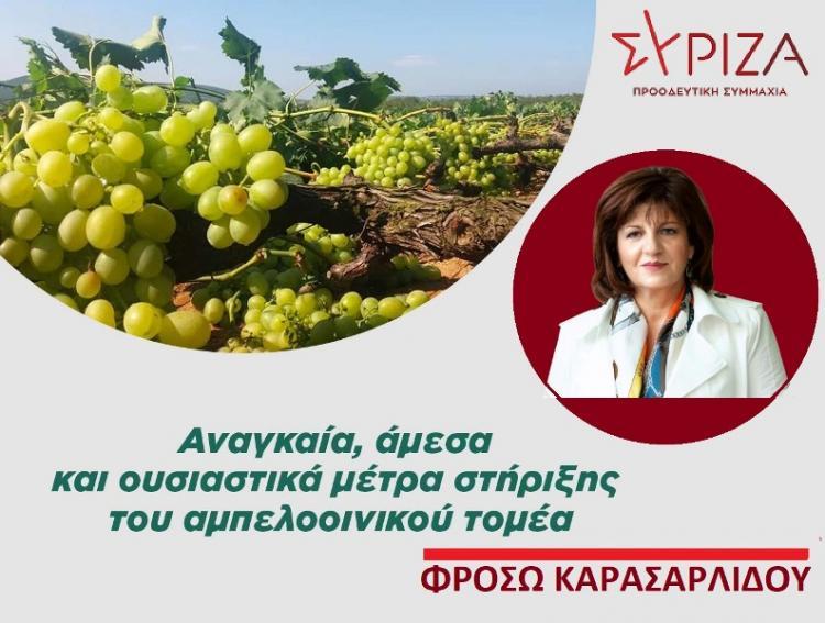 Φρ.Καρασαρλίδου : «Στηρίζουμε τον αγώνα των αμπελουργών και των οινοποιών για επιβίωση»