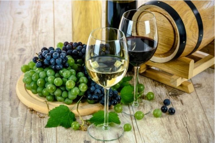 Πάνω από 500 κρασιά ΠΟΠ και ΠΓΕ στη Βόρεια Ελλάδα