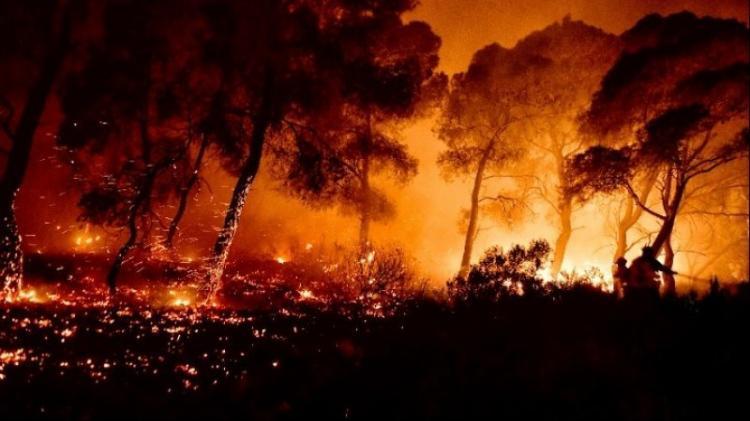 Οι εμπρηστές Τούρκοι που κατέκαψαν ελληνικά δάση, βγάζουν γλώσσα!! - Γράφει ο Θάνος Κάλλης