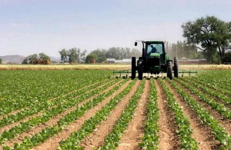 ΠΕ Ημαθίας: Πρόσκληση εκδήλωσης ενδιαφέροντος για την υποβολή προτάσεων για επενδύσεις σε γεωργικές εκμεταλλεύσεις