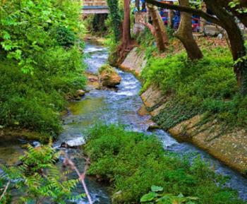2ος Μαθητικός Διαγωνισμός Ζωγραφικής : «Ο Τριπόταμος, το ποτάμι της Βέροιας»