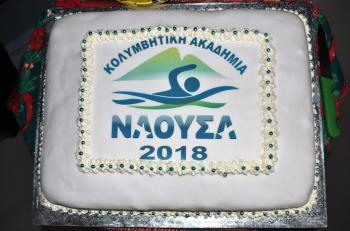 Κοπή Βασιλόπιτας και βραβεύσεις από την Κολυμβητική Ακαδημία «Νάουσα»