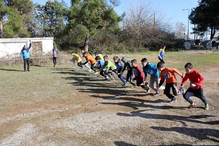 Αγώνες ΑθλοΠΑΙΔΕΙΑΣ δρόμου σε ανώμαλο έδαφος Δημοτικών, Γυμνασίων και Λυκείων περιοχής Βέροιας