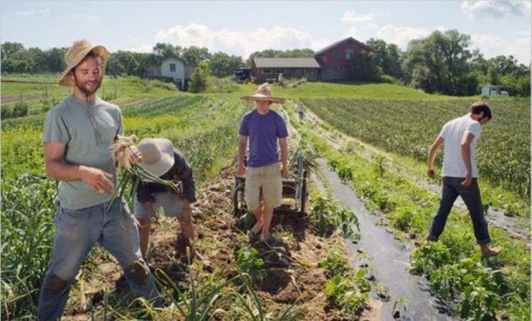Περιφερειάρχες: Να ενταχθούν όλοι οι επιλαχόντες στους Νέους Αγρότες και να εξαντληθεί ο αρχικός προϋπολογισμός