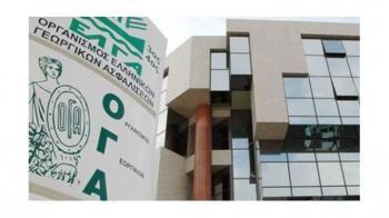 ΟΓΑ : Ποια προνοιακά επιδόματα και κοινωνικές παροχές θα καταβάλλονται από τον ΟΠΕΚΑ