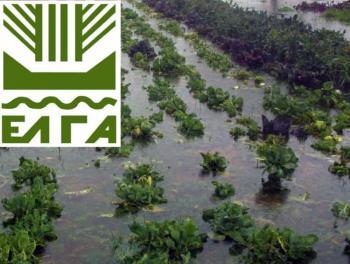 Ανταποκριτές ΕΛΓΑ Δήμου Βέροιας: Υποβολή αιτήσεων χορήγησης ενίσχυσης ΚΟΕ «Πλημμύρες 2014-2015»