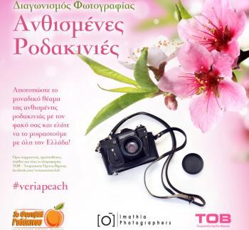 «Ανθισμένες Ροδακινιές»: Διαγωνισμός φωτογραφίας από τον ΤΟΒ και το Σύλλογο Καλλιτεχνών Επαγγελματιών Φωτογράφων Ημαθίας