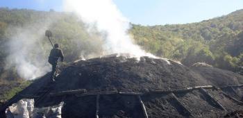 Από το…«να καούν τα κάρβουνα» στα «ελληνικά κάρβουνα»!