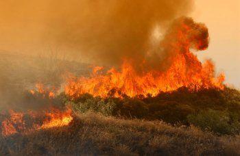 Πρόγραμμα Κρατικών Οικονομικών Ενισχύσεων «Πυρκαγιές 2014, 2015  και 2016»