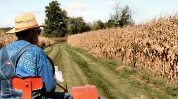 Επιχειρηματικότητα στις αγροτικές περιοχές : η ανάγκη έμπρακτης και ουσιαστικής ενίσχυσής της