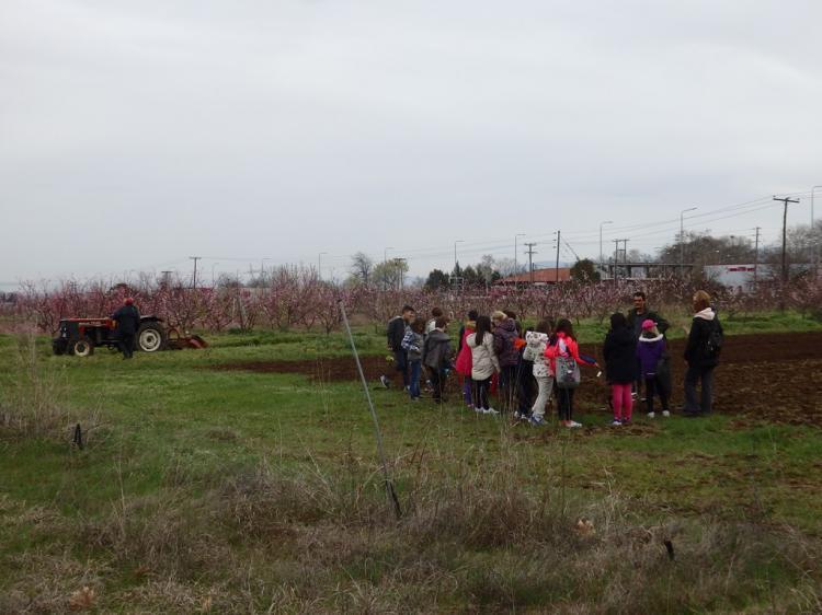 Δράσεις ενημέρωσης μαθητών για τη δενδροκομική έρευνα από το Τμήμα Φυλλοβόλων Οπωροφόρων Δένδρων Νάουσας
