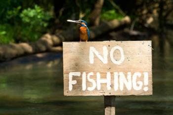Απαγόρευση ενάσκησης επαγγελματικής και ερασιτεχνικής αλιείας σε ποταμούς, παραποτάμους, χειμάρρους και λοιπά ρέοντα ύδατα