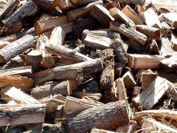 Διάθεση καυσόξυλων στους δημότες Νάουσας, υποβολή αιτήσεων από 07-08-2017 έως 18-08-2017