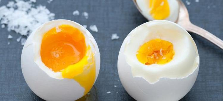 Αποτέλεσμα εικόνας για αυγό