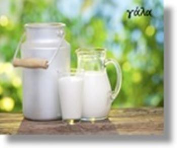 Δράση του Κοινωνικού Παντοπωλείου Δήμου Βέροιας την Παρασκευή 1 Ιουνίου με αφορμή την Παγκόσμια Ημέρα Γάλακτος