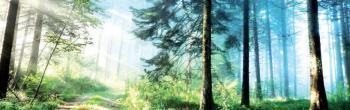 Προκήρυξη 8ου Αγώνα ορεινού τρεξίματος Ξηρολιβάδου (14χλμ.), Κυριακή 15 Ιουλίου 2018