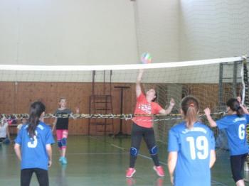 Αγώνες ΑθλοΠΑΙΔΕΙΑΣ Πετοσφαίρισης Δημοτικών Σχολείων περιοχής Βέροιας