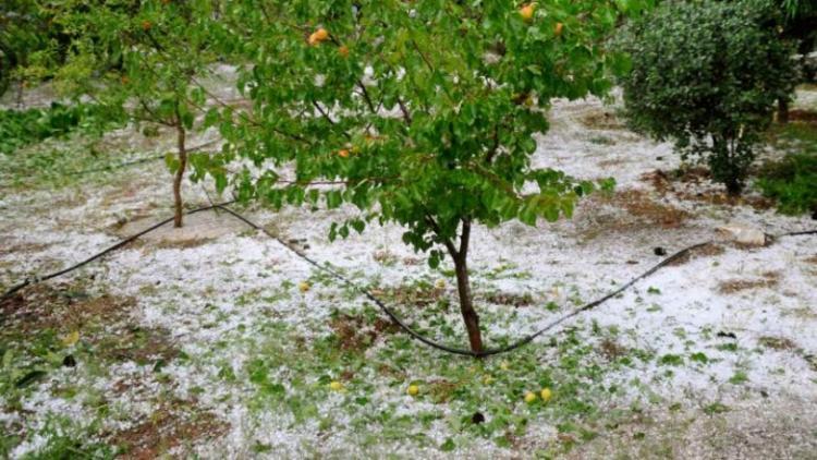 Υποβολή δηλώσεων ζημιάς από χαλάζι στο Δήμο Βέροιας