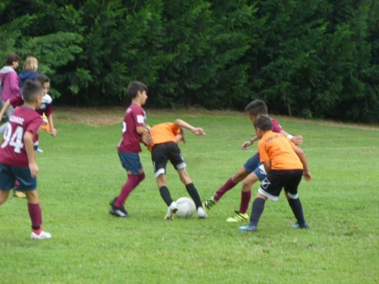 Τμήματα 2018 – 2019 στη Σχολή Ποδοσφαίρου Α.Ε.Π Βέροιας – «Στέφανος Γαϊτάνος»