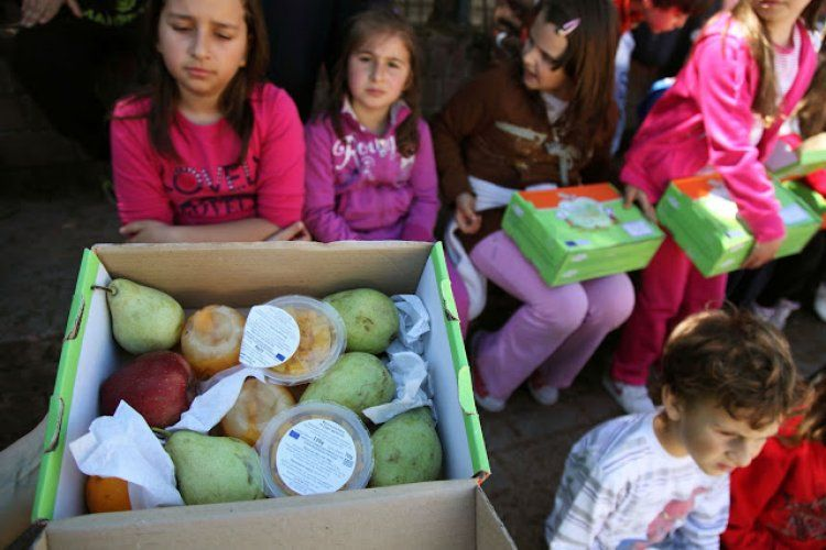 Διανομή φρούτων, λαχανικών και γαλακτοκομικών στα σχολεία και τη φετινή χρονιά